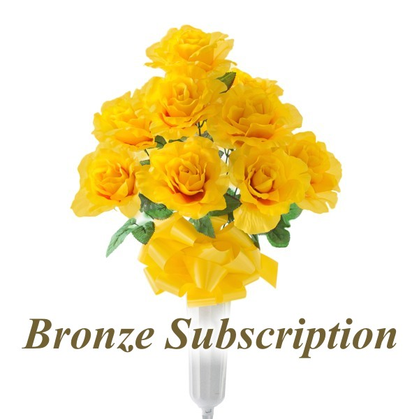 Bronze Subscription