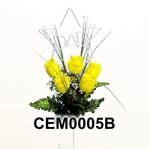 CEM0005B