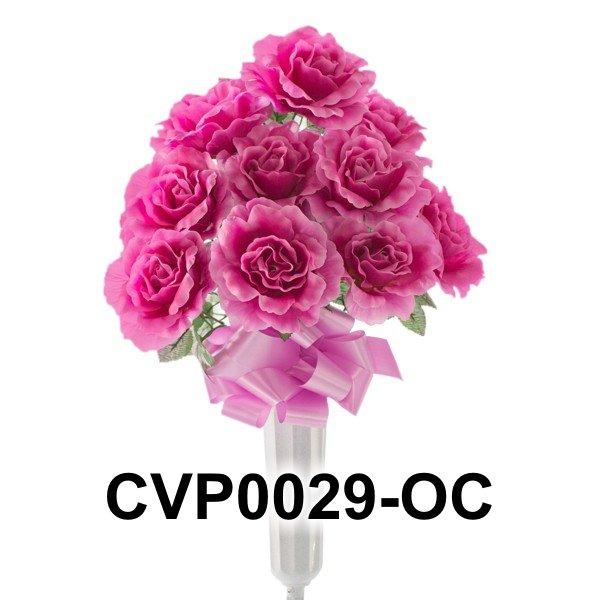CVP0029-OC