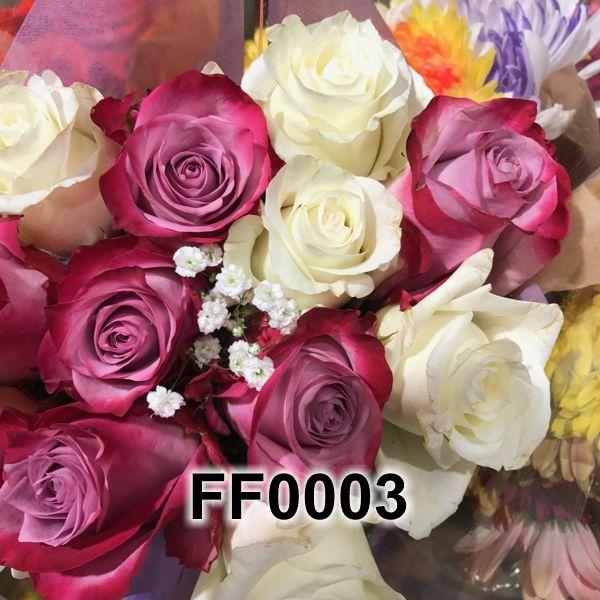 FF0003